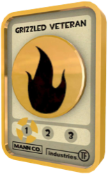TF2 Badge